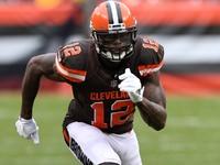 Josh Gordon não vai jogar no domingo devido a lesão no tendão – NFL.com