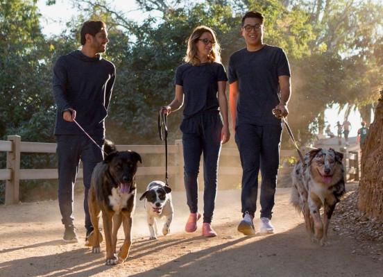 Ex-executivos da Casper estão construindo uma startup de alimentos para cães chamada Jinx