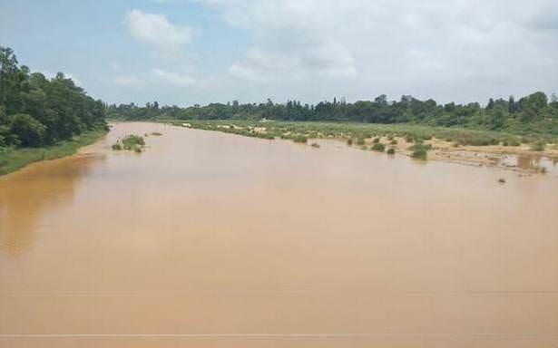 Chuvas trazem bons fluxos para os rios